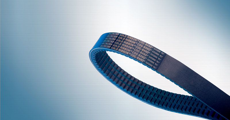 Image showing Gold-Ribbon Cog Banded Belts by Carlisle Belts