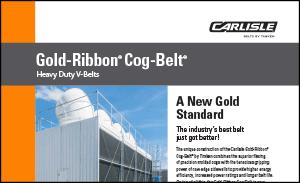 Download the Gold-Ribbon Cog V-Belt to explore the benefits of heavy-duty Gold-Ribbon Cog V-Belt