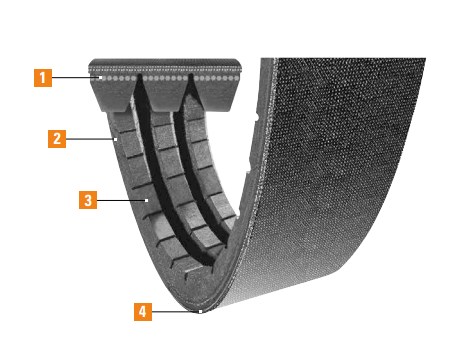 Power-Wedge Cog-Band Features